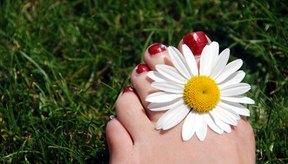 Los hongos en los dedos de los pies pueden tratarse; no tienes que vivir con ellos.
