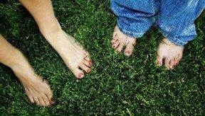 Los dedos cortos de los pies son dominantes.
