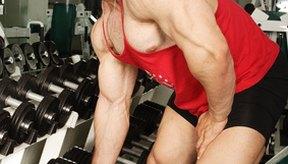 Puedes trabajar todos los músculos de tu cuerpo con el entrenamiento con pesas.