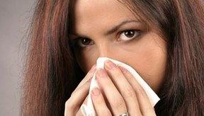 La nariz goteante, la inflamación de los labios y la lengua, tos y sibilancias son todos signos de una reacción alérgica.