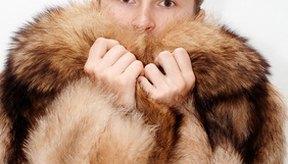 Como identificar un abrigo de mink