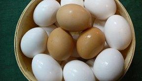 Los huevos cafés y los huevos blancos tienen el mismo contenido de grasa.