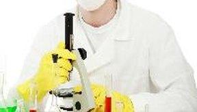 Las infecciones por hongos pueden tratarse con o sin prescripción médica.