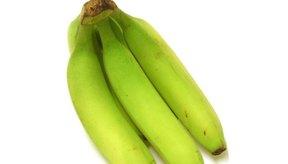 Aunque los plátanos lucen como bananas, se los utiliza de forma diferente.