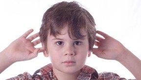 La mayoría de los parásitos del oído entran en la categoría de insectos depredadores.