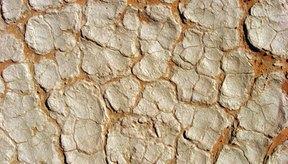 La piel seca y escamosa puede ser dolorosa y difícil de tratar.