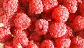 Las frambuesas son ricas en ácido elágico, un compuesto anticancerígeno.