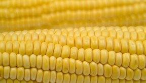 Los carbohidratos del maíz contribuyen a tus necesidades diarias de energía.