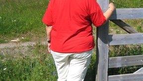 El Dr. H. Gadimi cree que la cisteína se debe ofrecer a los pacientes obesos al final de cada comida.