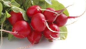 Los tintes en los alimentos y color pueden cambiar el color tu tus heces.
