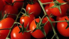 Los tomates cherry contienen muchos antioxidantes.