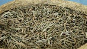 Las hierbas medicinales pueden ayudar a aliviar el dolor del nervio.