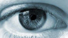El ojo capta los estímulos luminosos y los transforma en impulsos eléctricos que viajan hacia el cerebro.