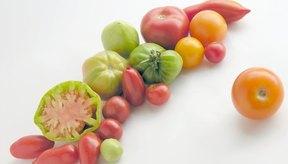 Los tomates vienen en docenas de variedades.