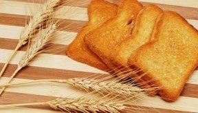 Las tostadas de trigo entero son un alimento apropiado para hacer dieta.