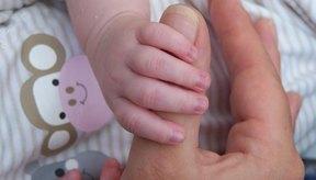 Cuatro etapas de crecimiento existen desde el nacimiento hasta la adolescencia.