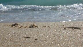 El agua de mar no sólo contiene la sal que se usa para cocinar.
