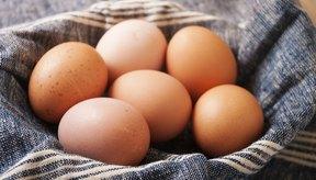 Huevos frescos en un paño azul.