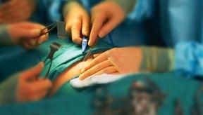 La cirugía a menudo es necesaria para una hernia sintomática.