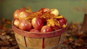 Hay una diferencia nutricional entre los alimentos orgánicos y no orgánicos.