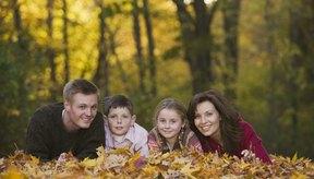 Convierte tu pasión por la comida en tiempo para tu familia