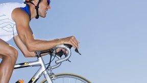 Usa gafas de sol que protejan tus ojos de los escombros y los insectos.