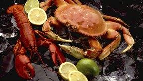 El cangrejo y la langosta dan proteína y zinc para ayudar a que los músculos sanen.
