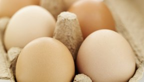 Los huevos orgánicos no contienen ninguna hormona o antibióticos.