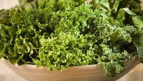 Alimentos que ayudan a prevenir el reumatismo.