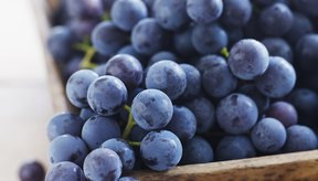 Consume frutas y vegetales frescos.