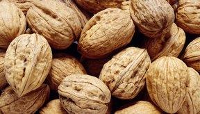 La nueces son el fruto seco más estudiado por los científicos.