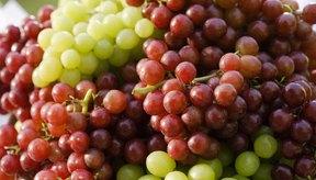 Uvas frescas.