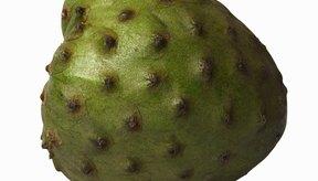 La guanábana crece en regiones cálidas de todo el mundo.
