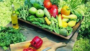 Opciones de alimentación saludable te mantendrán con energía durante todo el día, mientras promueven la pérdida de peso.