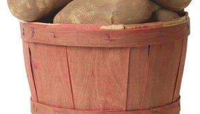 Los vegetales almacenan glucosa como almidón.