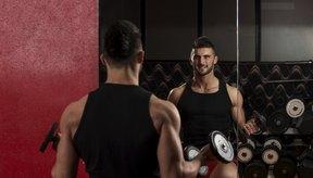Las elevaciones de brazos con peso libre también pueden ser beneficiosas.