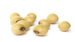 Los porotos de soja suelen ser genéticamente modificados.