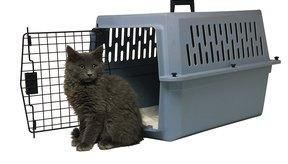 Una jaula mantendrá a tu gato seguro durante el vuelo.