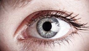 Muchas clases de bacterias pueden provocar infecciones dolorosas en los ojos.