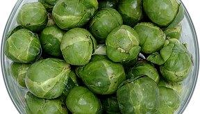 Esta verdura es llamada en Europa repollito de bruselas.