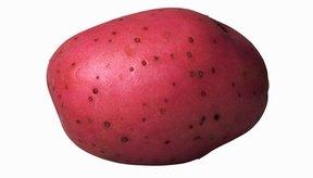 Las patatas rojas aumentan tu consumo de hierro y vitamina C.