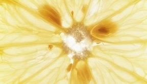 Los limones son una poderosa arma contra las verrugas.