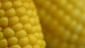 La cantidad de grasa en el maíz depende de cómo se prepare.