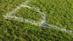Una línea pintada de blanco denota una línea de meta FIFA, independientemente de su longitud.