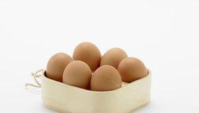 El análisis nutricional de los huevos de pavo.