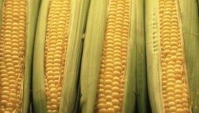 El maíz tiene más calorías que los vegetales sin almidón.