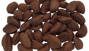 Las nueces de Brasil son la principal fuente de selenio.