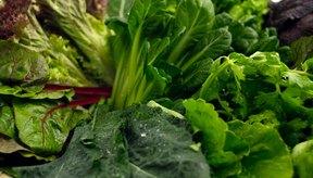 Los vegetales con hojas verdes son una fuente natural alta en magnesio.