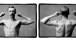 Los ejercicios para los músculos antagonistas te ayudan a ejercitarte y mantener el desarrollo de tu cuerpo en balance.