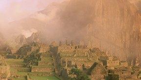 La maca es oriunda del Perú y crece en las altas elevaciones en la Cordillera de los Andes.